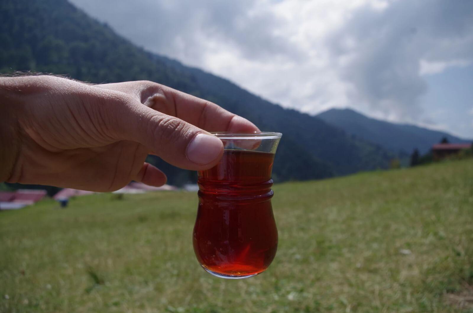 حيدر نبي في الشمال التركي